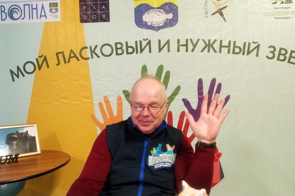 В эфире Зеленоградск – кошачья столица мира!